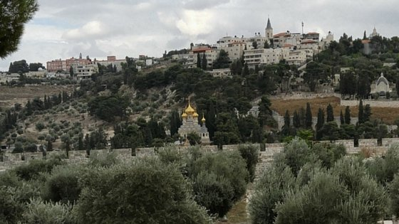 Mount Olive and the Garden of Gethsemane.