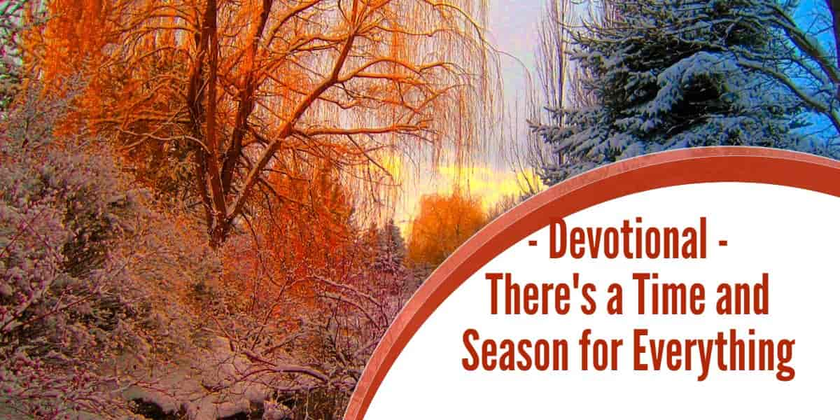 Devotional – There's a Time and Season for Everything