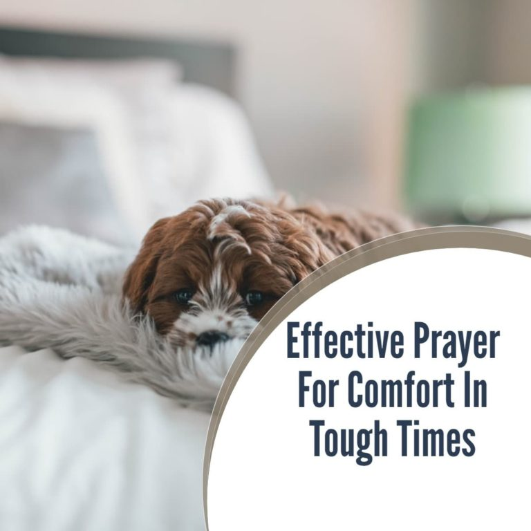Prayer For Comfort in tough times