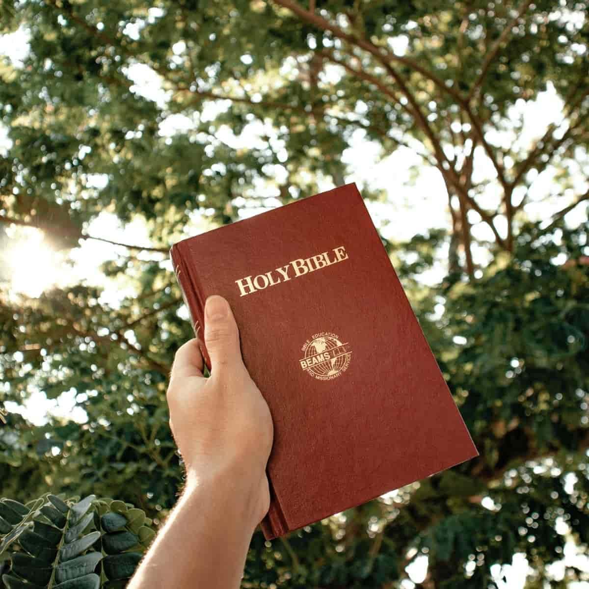 Prayer to Walk in the Holy Spirit